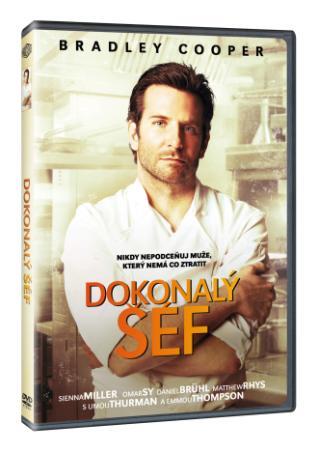 Dokonalý šéf (DVD)