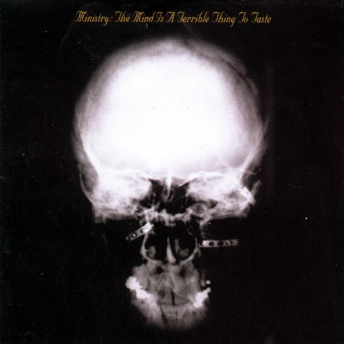 Ministry - Mind is a Terrible Thing To Taste