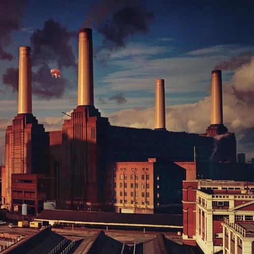 Pink Floyd - Animals (2011)
